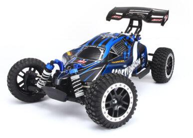 1-10 buggy